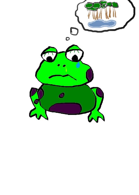 Peruvian Tree Frog